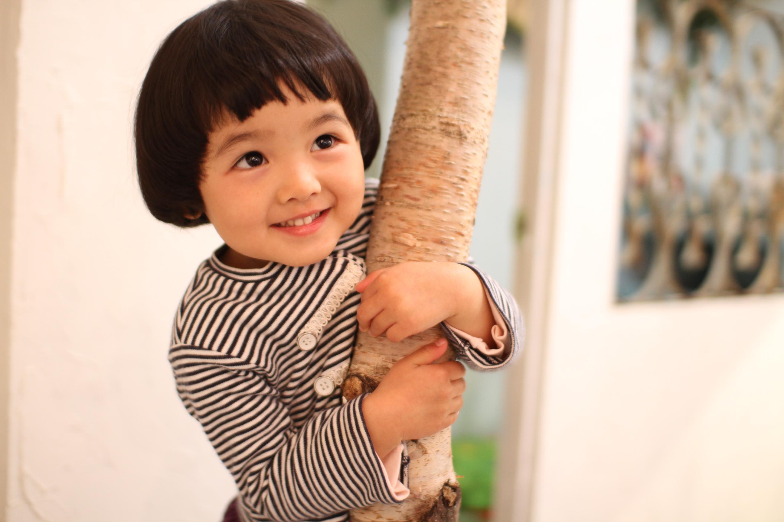 出典 http//www.onico.jp/uimages/IMG_41101